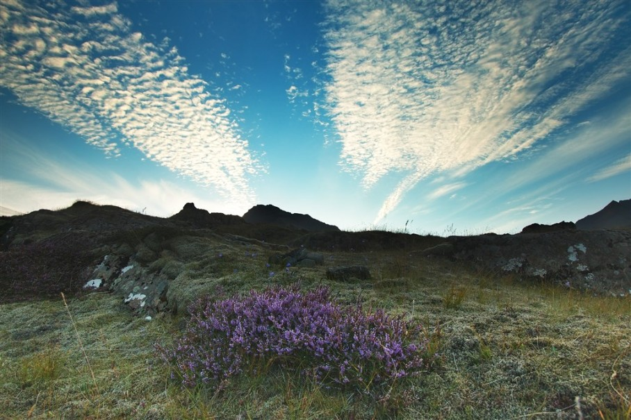 Island - mezi Ledovci, sopkami a horkými prameny (fotografie 7)