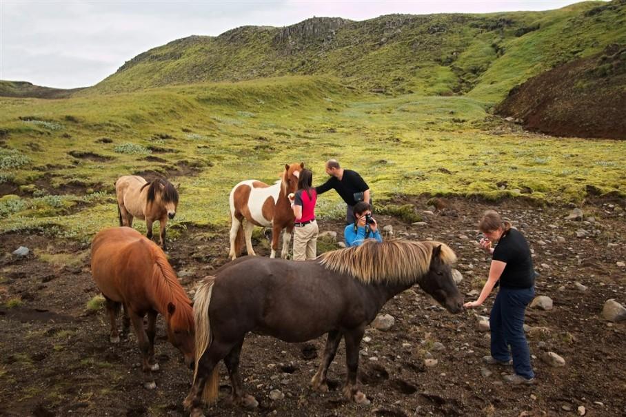 Island - mezi Ledovci, sopkami a horkými prameny (fotografie 8)