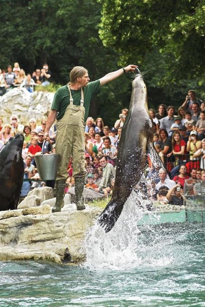 Zoo Vídeň + Schönbrunn (fotografie 8)