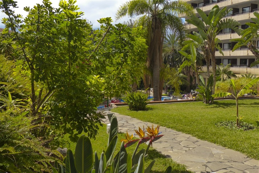 Hotel Smy Puerto De La Cruz (fotografie 10)