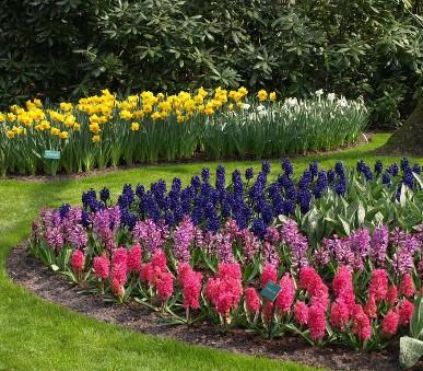 Holandsko, Velikonoce V Zemi Tulipánů S Ubytováním V Rotterdamu 2022