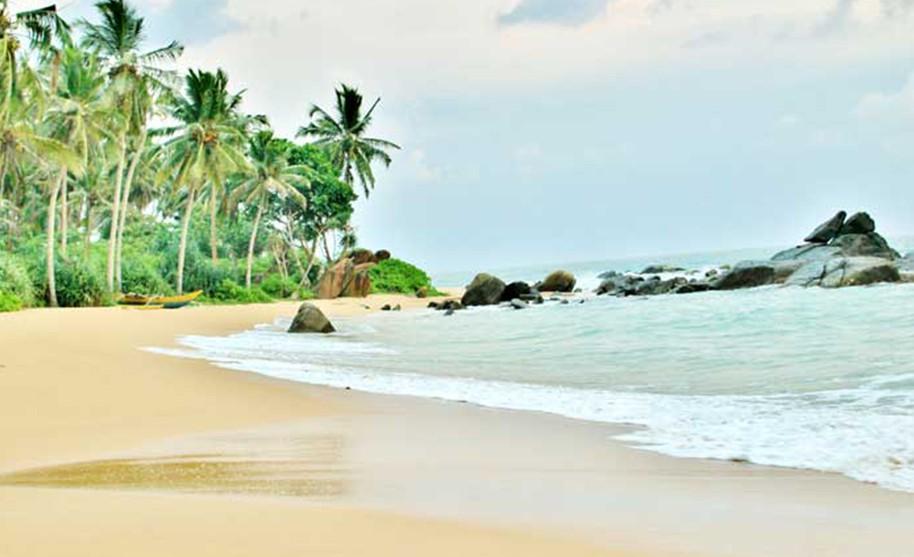 liduprázdná písečná pláž lemovaná palmami
