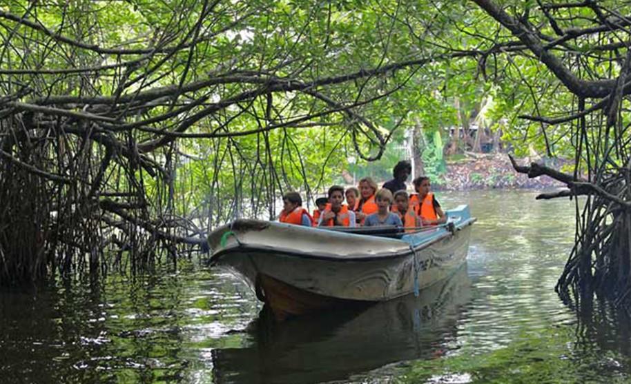 lodní výlet do pralesa
