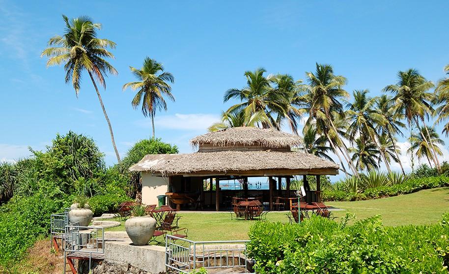 Posezení pod palmami Srí Lanka