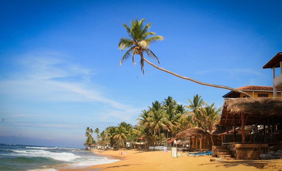 Písečná pláž lemovaná palmami a obchůdky