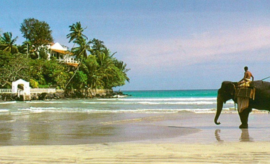 Procházka po pláži na hřbetě slona