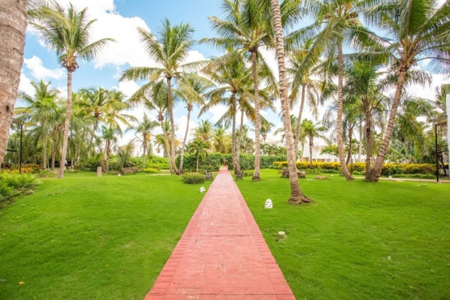 Hotel Be Live Collection Canoa (fotografie 18)