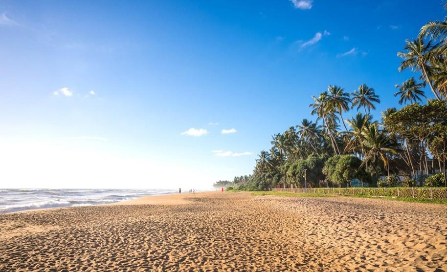Procházka po dlouhé písečné pláži lemované palmami