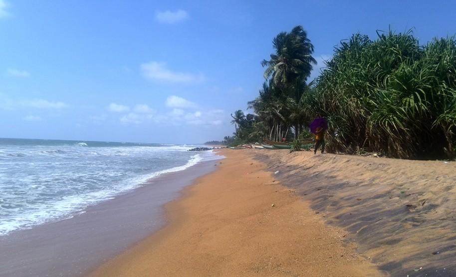 Divoké písečné pláže v oblasti Kalutara