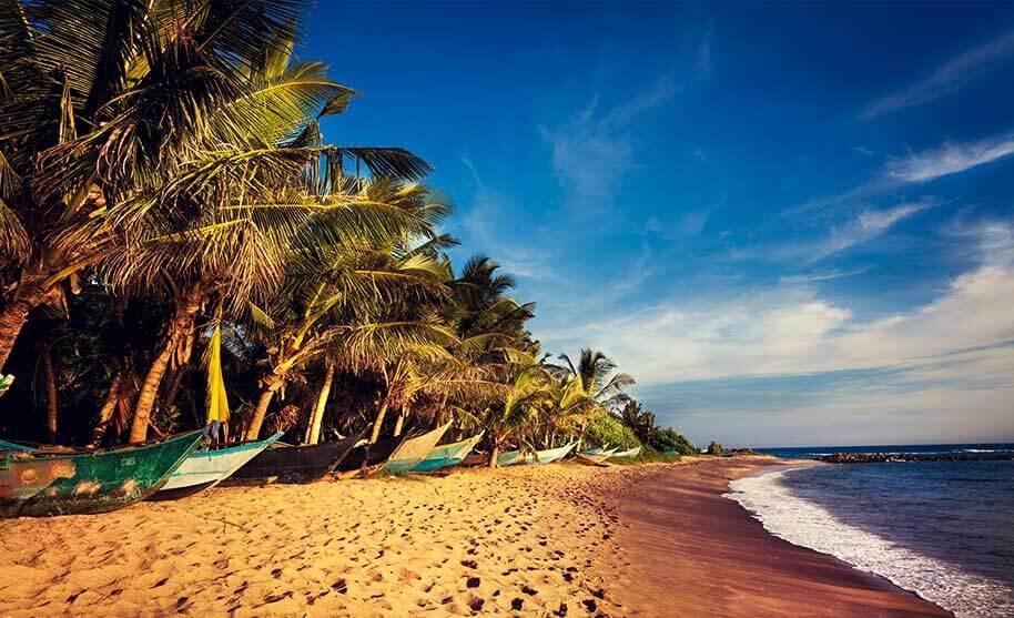 Lodě ve stínu kokosových palem