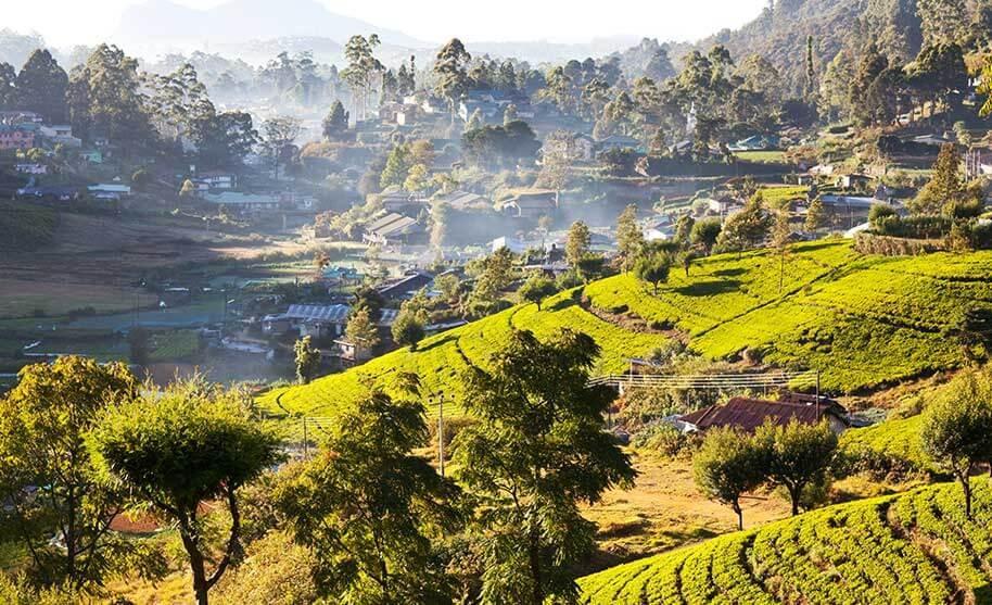 Horské vesničky obklopené čajovými plantážemi