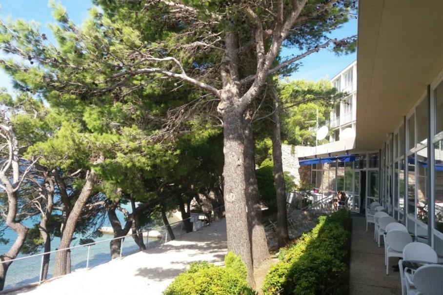 Bluesun Hotel Sagitta (fotografie 13)
