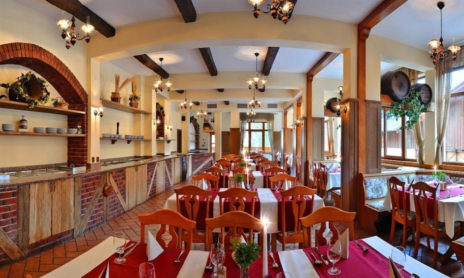 Hotel Ski & Wellness Residence Družba (fotografie 12)