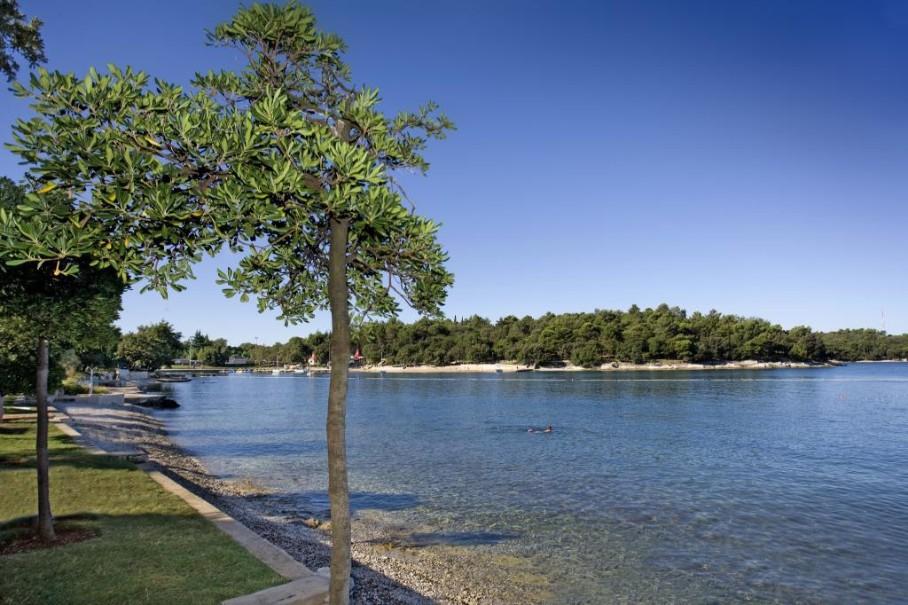 Hotel Istra Plava Laguna (fotografie 15)