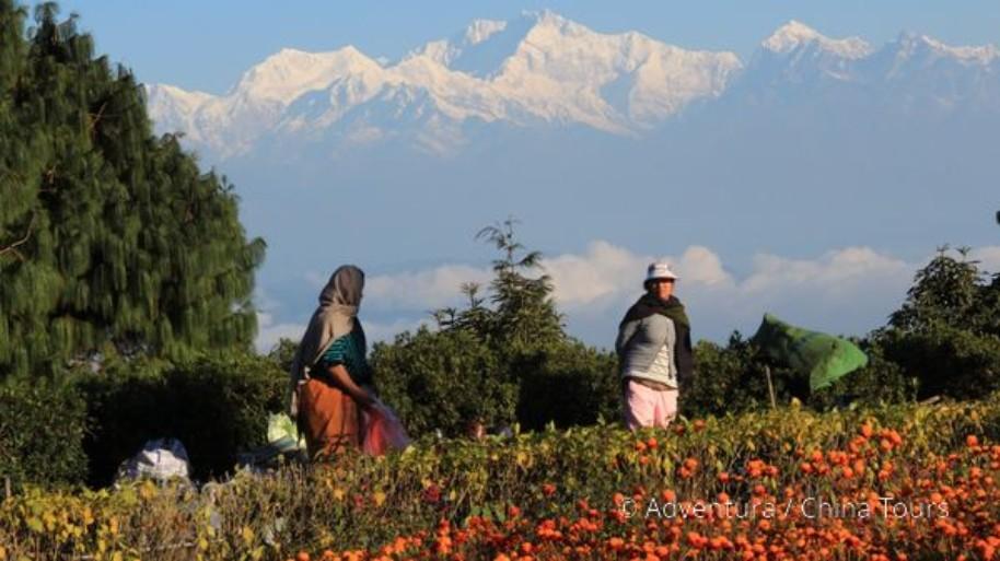 Nepál, Sikkim a Bhútán (fotografie 2)