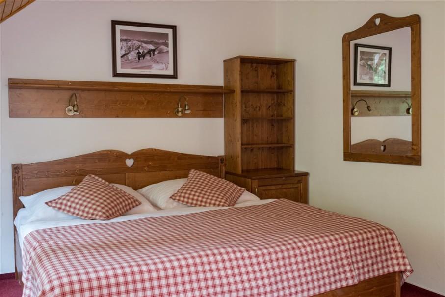 Hotel Ski & Wellness Residence Družba (fotografie 16)