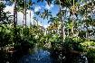 Vista Sol Punta Cana Hotel (fotografie 5)