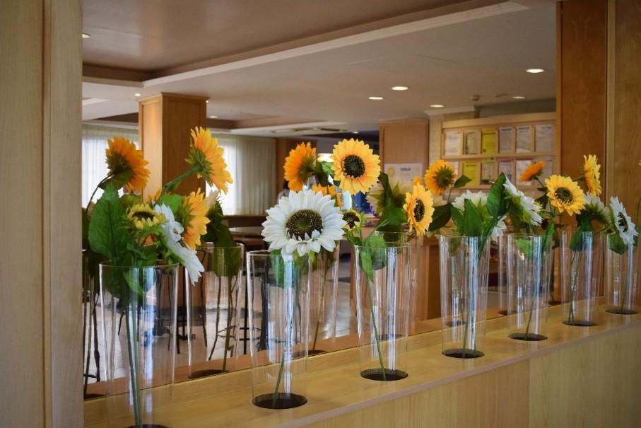 Hotel Top Summer Sun (fotografie 34)