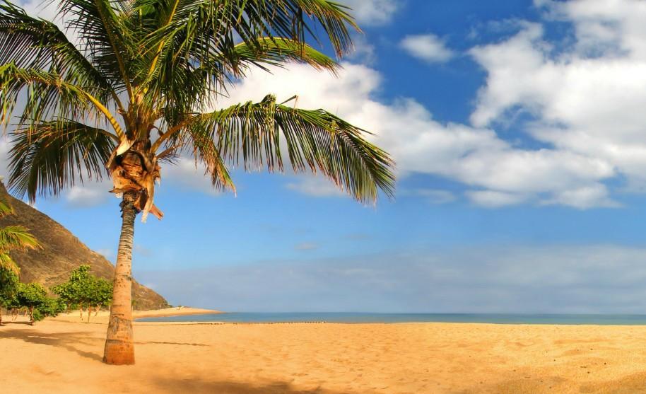 tropický ráj na písečné pláži na Gran Canaria