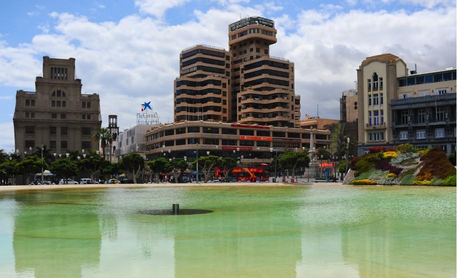 velká kačna na náměstí v Santa Cruz de Tenerife