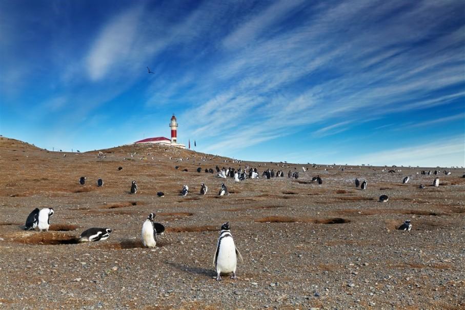 Patagonie - Země na konci světa (fotografie 9)