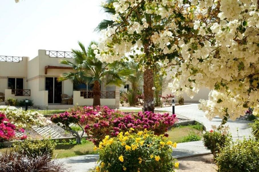 Coral Beach Hotel & Spa (fotografie 17)
