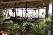 Hotel Morjim Coco Palms Resort (fotografie 11)