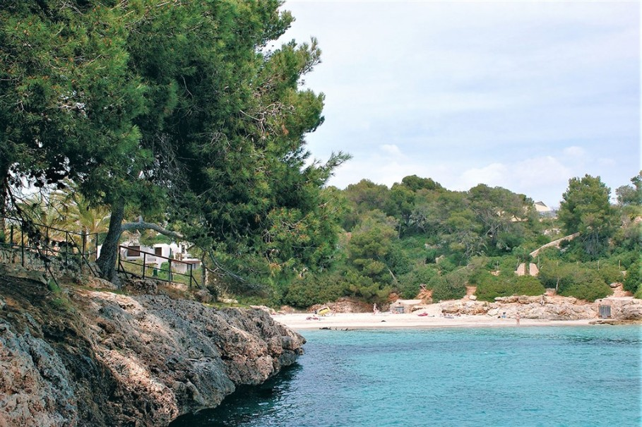 Hotel Barcelo Ponent Playa (fotografie 11)