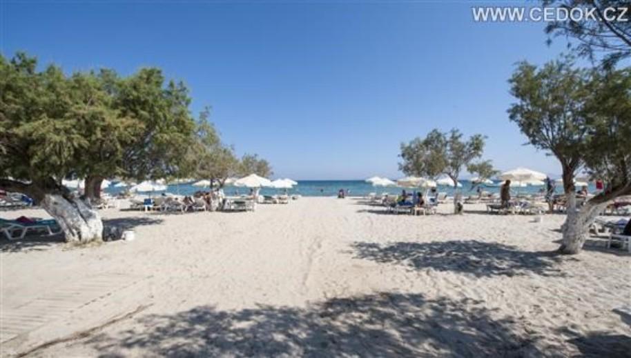 Hotel Tigaki Beach (fotografie 5)
