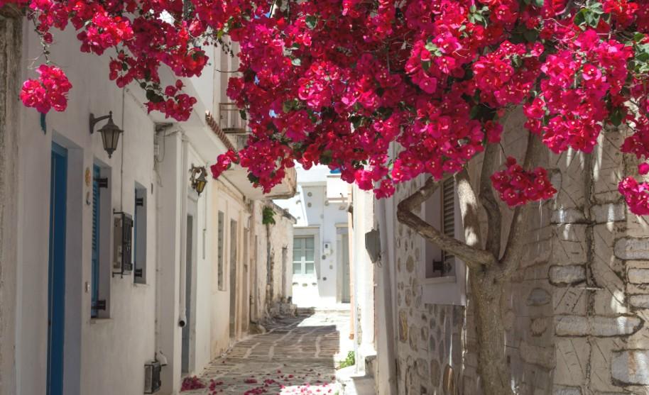 Útulná ulička s květy na Samosu v Řecku