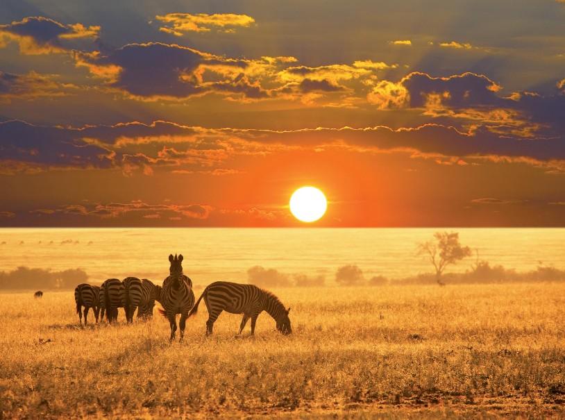 Namibie - Svůdná a nepoznaná | Program od 2020 (fotografie 12)