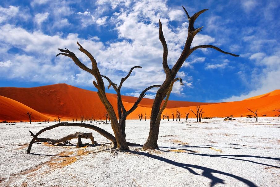 Namibie - Svůdná a nepoznaná | Program od 2020 (fotografie 1)