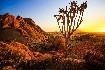 Namibie - Svůdná a nepoznaná (fotografie 3)