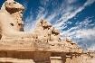 Alej sfing s hlavou berana v Karnaku v Hurghadě v Egyptě