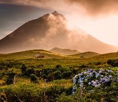 To nejlepší z Azorských ostrovů + koupání v lávových jezírkách
