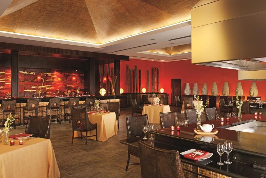 Hotel Now Larimar Punta Cana (fotografie 12)