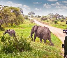 Keňa - Tanzanie - Zanzibar