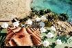 Hotel Barcelo Ponent Playa (fotografie 12)