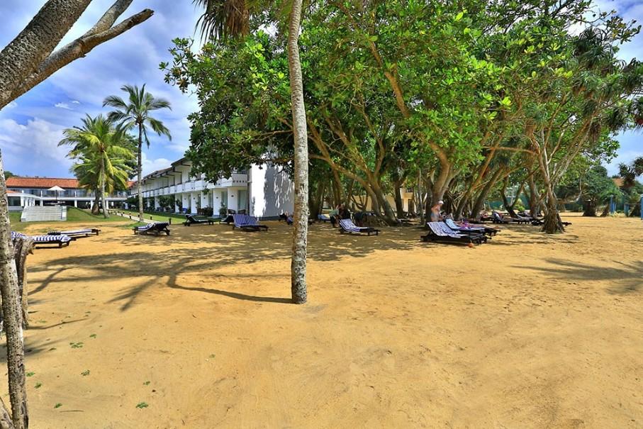 Hotel Hibiscus Beach (fotografie 9)
