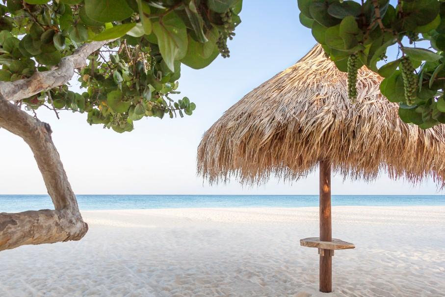 Hotelový komplex Manchebo Beach Resort Spa (fotografie 5)
