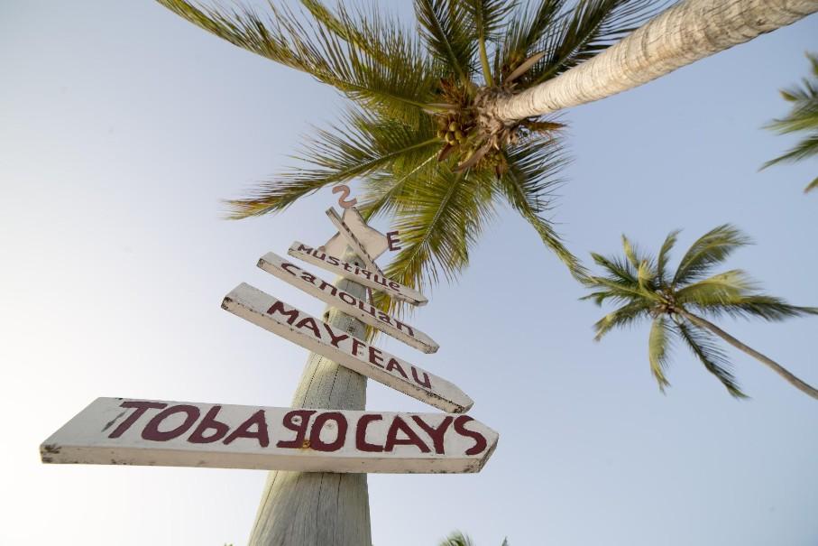 Hotel Palm Island (fotografie 2)
