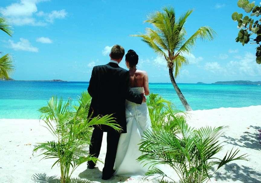 Hotel Palm Island (fotografie 9)