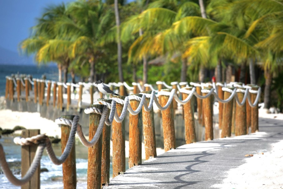 Hotel Palm Island (fotografie 31)