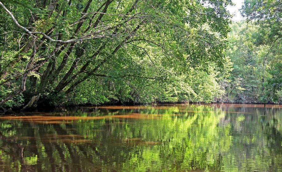 Řeka Ropotamo v NP Arkutino nedaleko letoviska Carevo