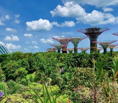 Singapur - perla Asie od A do Z (hlavní fotografie)