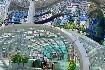 Singapur - perla Asie od A do Z (fotografie 64)