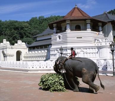 Amaya Hills Kandy (hlavní fotografie)
