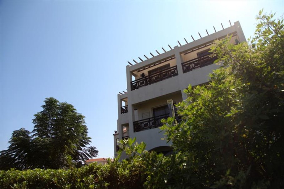 Mimosa Hotel (fotografie 6)