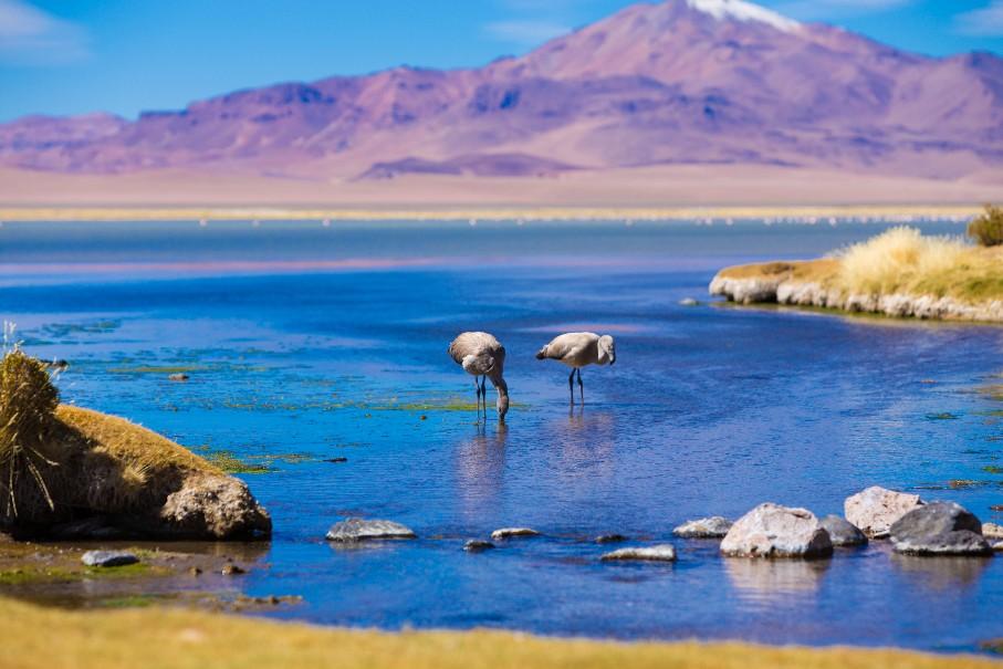 Argentina-Bolívie-Chile (fotografie 2)