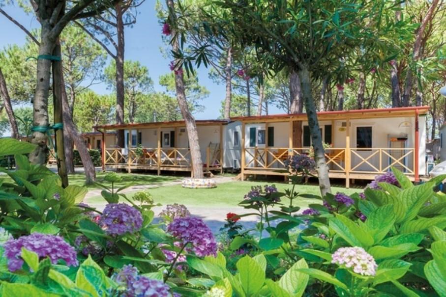 Vela Blu Camping Village (fotografie 15)